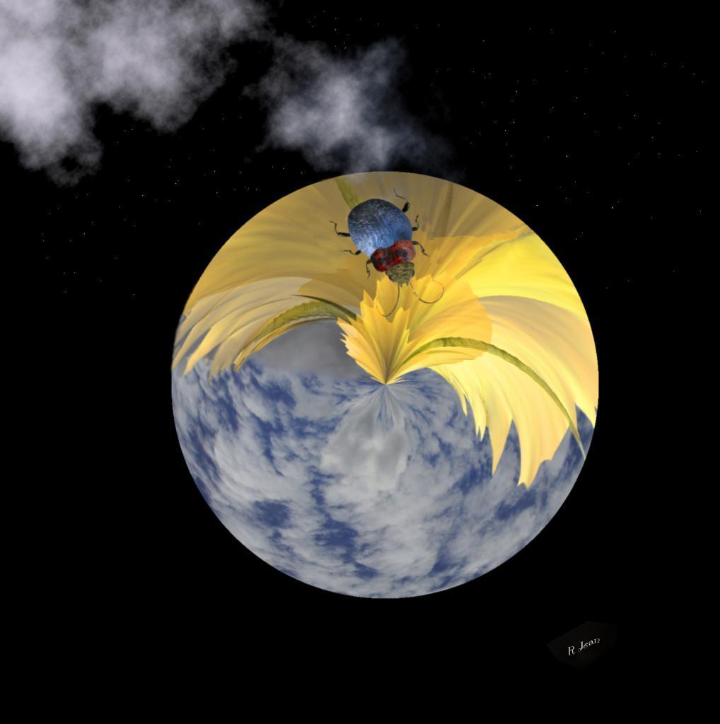 planète scarabée jaune bleu