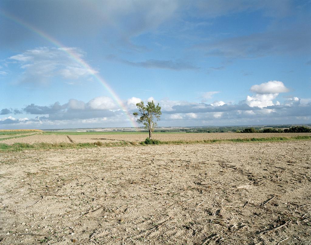 arbre arc-en-ciel terre champs soleil campagne